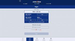 pwa-exito-vision-proyecto-web-desktop-de-pagos-online-servicios-telefonicos-cable-tv-raylinaquino-2
